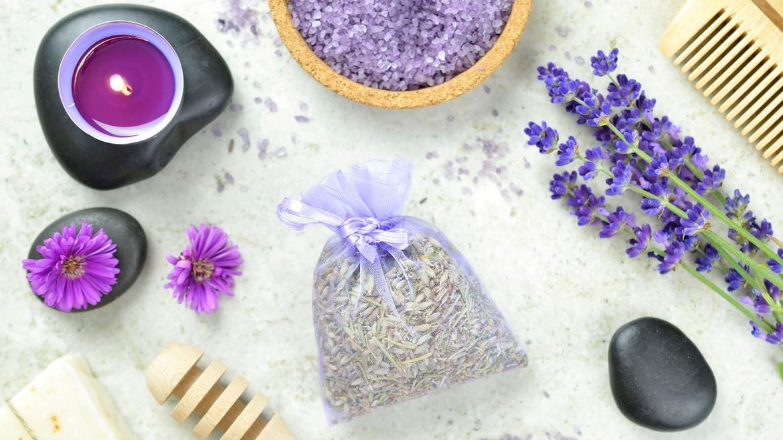 Susz z kwiatów - suszarka do grzybów MPM